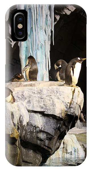 Seaworld Penguins IPhone Case