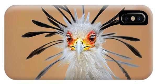England iPhone Case - Secretary Bird Portrait Close-up Head Shot by Johan Swanepoel