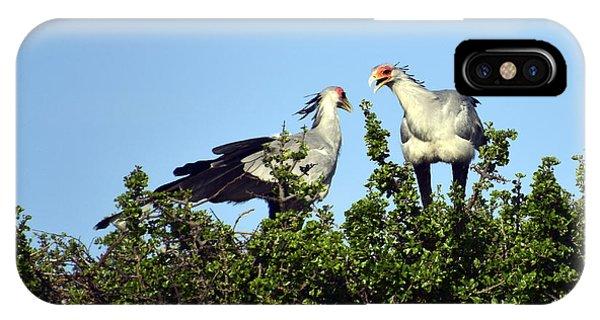 Secretary Birds Discuss Their Nest Building IPhone Case