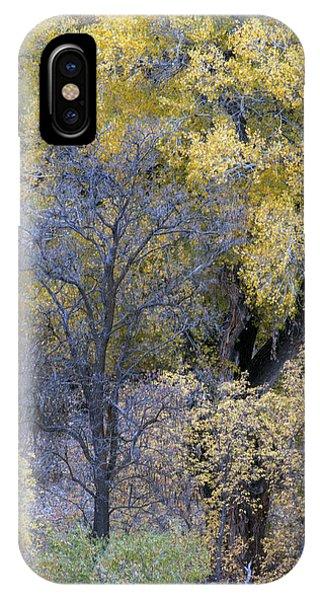 Sedona Fall Color IPhone Case
