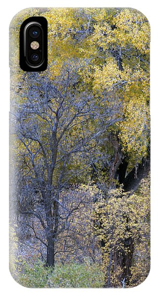 IPhone Case featuring the photograph Sedona Fall Color by Tam Ryan