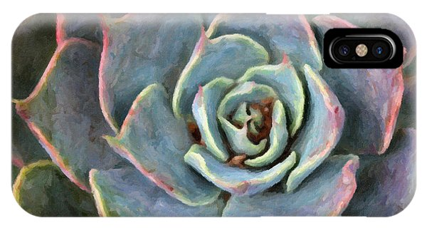 Sedum With Pink Edges IPhone Case