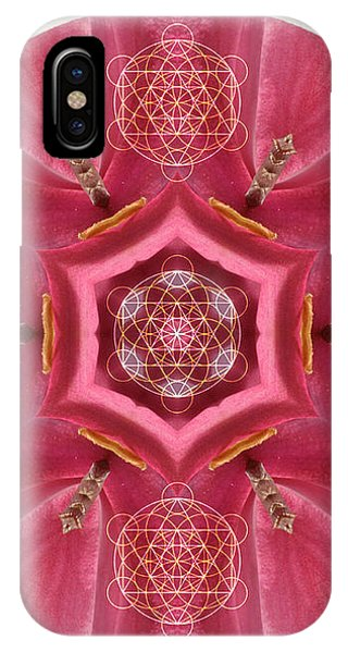 iPhone Case - Seeds Of Transformation by Alicia Kent