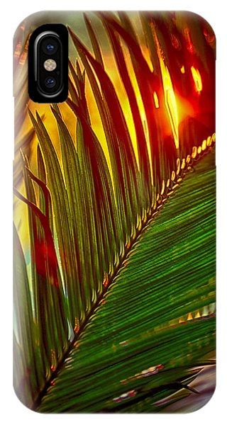 Fire Ball iPhone Case - Sego Frond Fire by Scott Campbell