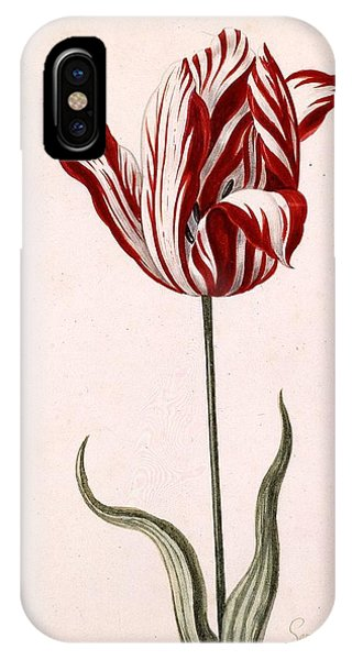 Tulip iPhone X / XS Case - Semper Augustus by Celestial Images