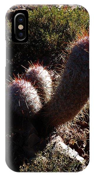 Senor Cacti IPhone Case