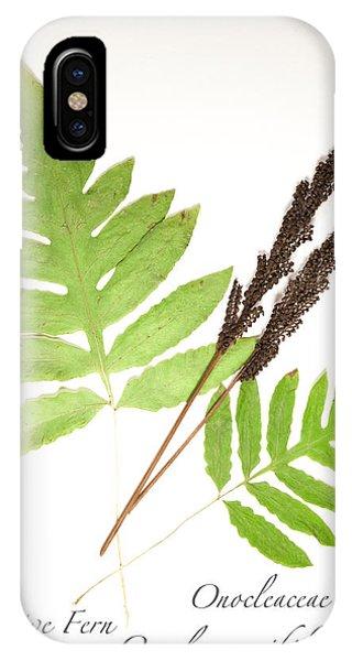 Sensitive Fern  IPhone Case