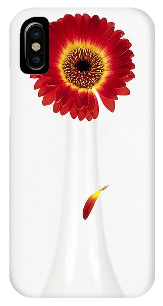Fall Flowers iPhone Case - Separation by Dave Bowman