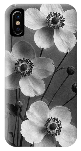 September Charm Anemones IPhone Case