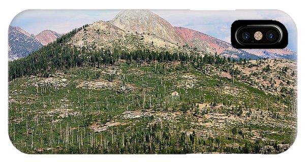 Sequoi National Park Phone Case by Sophie Vigneault