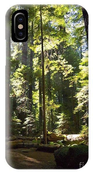 Sequoia Forest IPhone Case