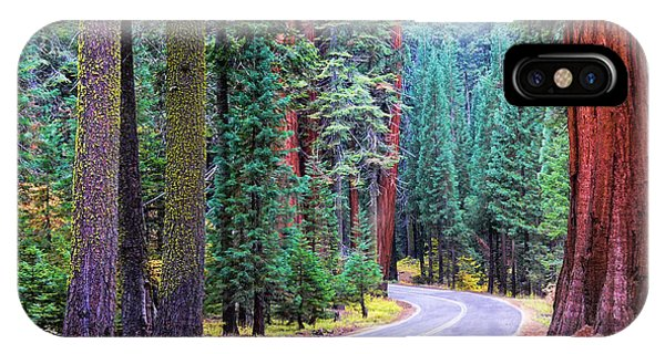 Sequoia Hwy IPhone Case