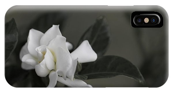 Serene IPhone Case