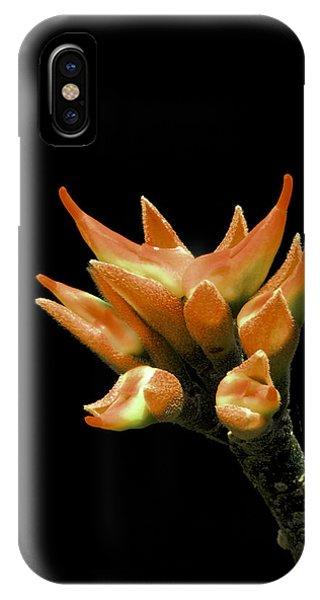 Serene - Unruffled IPhone Case