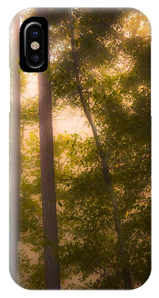 Serenity In The Forest IPhone Case