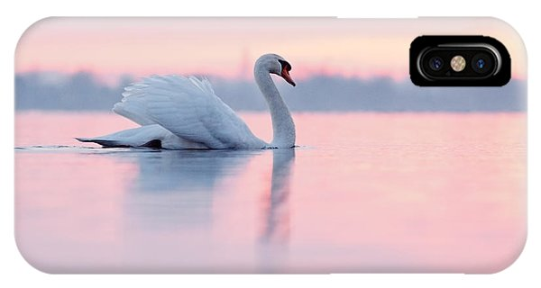 Swan iPhone Case - Serenity   Mute Swan At Sunset by Roeselien Raimond