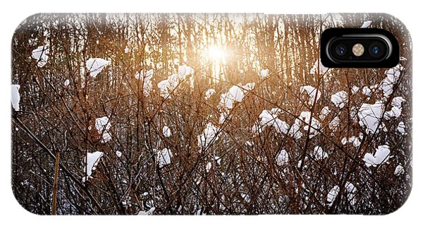 Sun Set iPhone Case - Setting Sun In Winter Forest by Elena Elisseeva