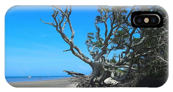 Shackleford Banks Tree 2 IPhone Case