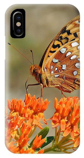 Shades Of Orange IPhone Case