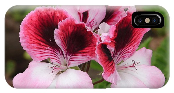 Shades Of Pink 2 IPhone Case