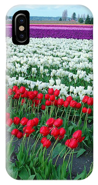 Shades Of Tulips IPhone Case