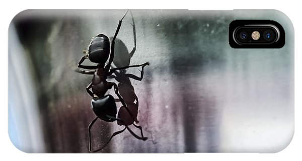 Ant iPhone Case - Shadow Dancing by Susan Capuano