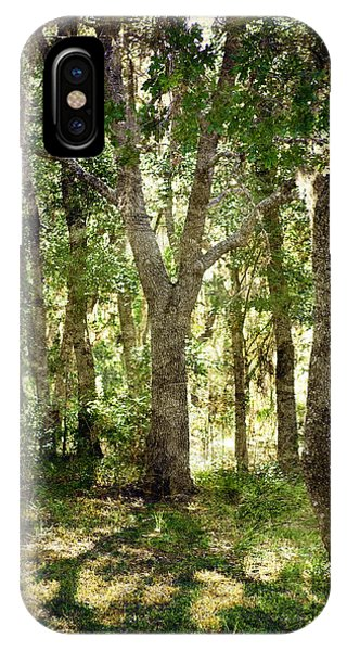 IPhone Case featuring the photograph Shadow Forest by Judy Hall-Folde