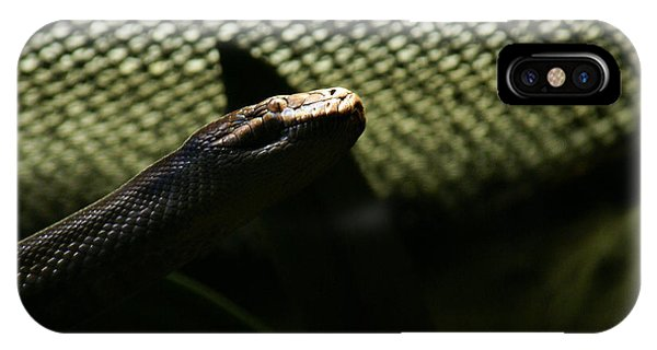 IPhone Case featuring the photograph Shadow Snake - 1 by Linda Shafer