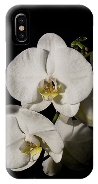 Shadowy Orchids IPhone Case