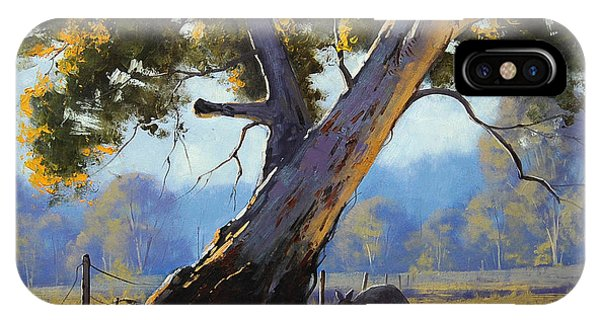 Kangaroo iPhone Case - Shady Tree by Graham Gercken
