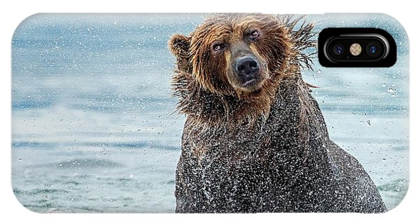 Brown Bear iPhone Case - Shaking - Kamchatka, Russia by Giuseppe D\\\'amico