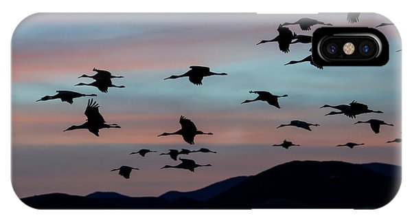 Sandhill Cranes Landing At Sunset 2 IPhone Case