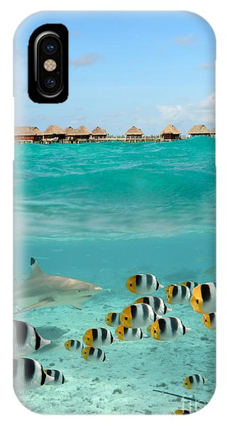 Over-under With Shark And Butterfly Fish At Bora Bora IPhone Case