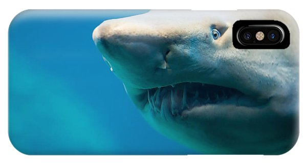 Bull iPhone Case - Shark by Johan Swanepoel