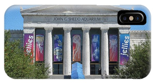 Shedd Aquarium-1 IPhone Case