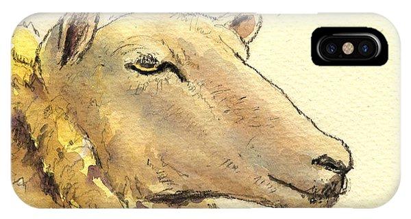 Sheep iPhone Case - Sheep Head Study by Juan  Bosco