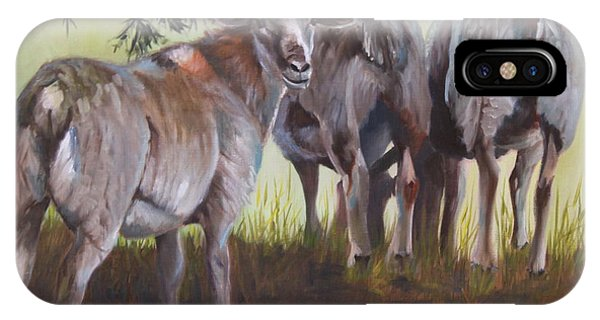 iPhone Case - Sheep by Karen Langley