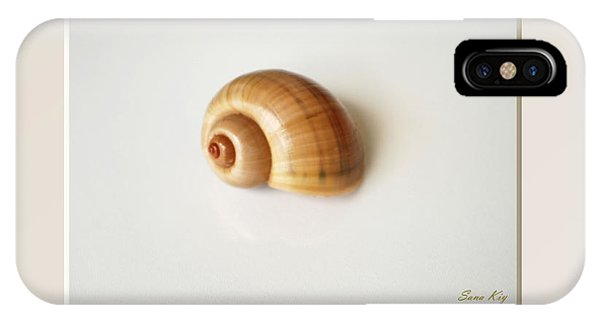 Shell. Delicate Colors IPhone Case