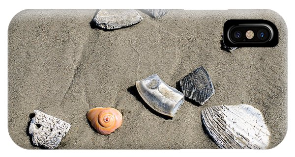 iPhone Case - Shells by George Fredericks
