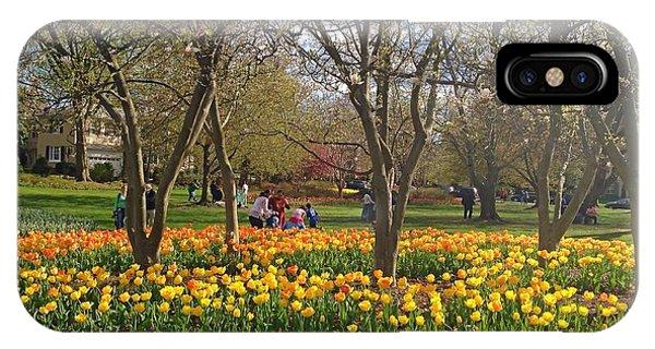 Sherwood Gardens Yellow Tulips IPhone Case