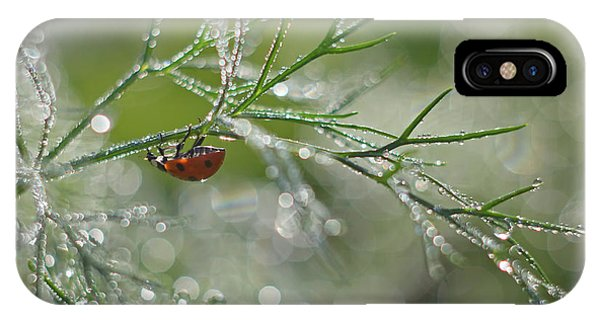 Water Droplets iPhone Case - Shine Of Morning Bokeh by Elena Solovieva