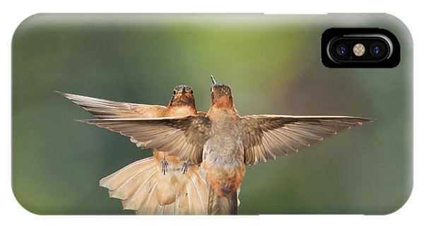 Shining Sunbeam Hummingbirds IPhone Case