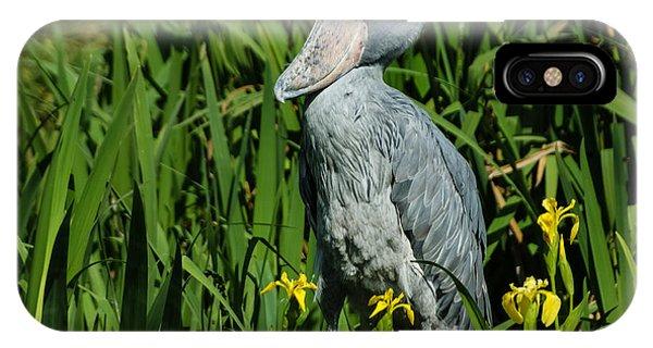 Shoebill Stork IPhone Case