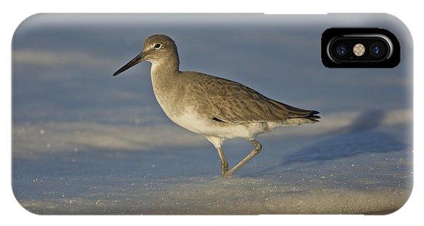 Shore Bird Mg_7903 IPhone Case