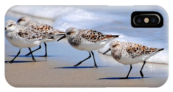Shorebird Quartet IPhone Case