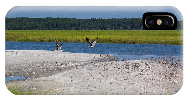 Shorebirds And Marsh Grass IPhone Case