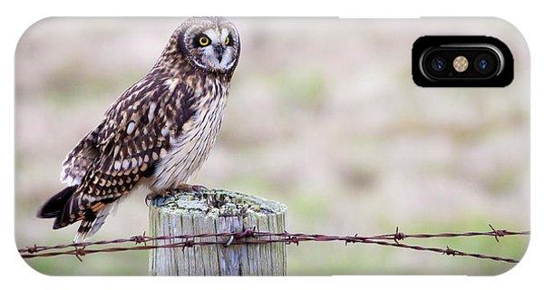 Short Eared Owl Boundary Bay IPhone Case