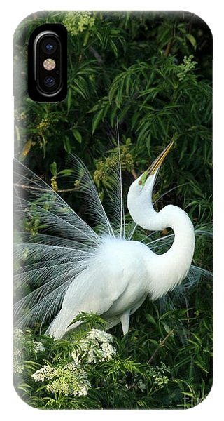Showy Great White Egret IPhone Case