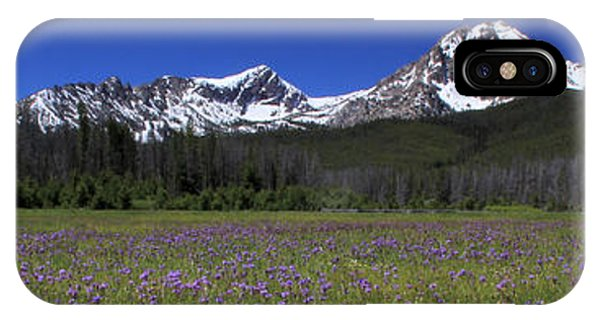Showy Penstemon Wildflowers Sawtooth Mountains IPhone Case