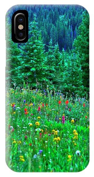 Shrine Pass Wildflowers IPhone Case